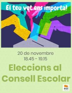 eleccions consell